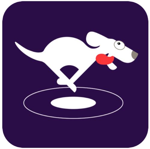VPN Dog For PC